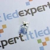 Piranha LEDs - Bianco Caldo